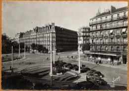21 / DIJON - Place Darcy, Grand Café, Automobiles... (années 50) - Dijon