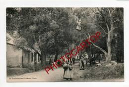 La Cueillette Des OLIVES En Corse-Metier-Types-Folklore-Moretti 227-ETAT-TB-Sup- - Non Classificati