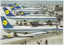 TRANSPORT AERODROMES FRANKFURT AM MAIN RHEIN-MAIN GERMANY BIG POSTCARD - Aerodrome