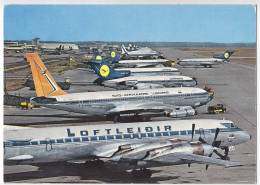 TRANSPORT AERODROMES FRANKFURT AM MAIN RHEIN-MAIN GERMANY BIG POSTCARD 1972. - Aerodrome