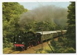 TRAIN - AK141261 Lok 38 1182 Mit Sonderzug Im Elstertal - Treni