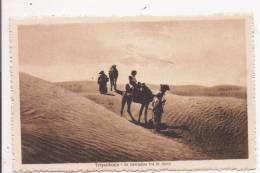 TRIPOLITANIA 94204  IN CAMMINO FRA LE DUNE  1929 - Libye