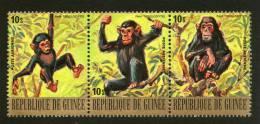 Guinea 1977 Chimpanzee Monkey Wild Life Animal Fauna Se-tenant Sc C140 MNH # 4128 - Chimpanzees