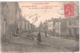 81 TARN DOURGNE Avenue De St-Stapin, Les Arcades Et Le Marronnier Géant  31 - Dourgne