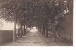 SALORNAY SUR GUYE - La Promenade - Unclassified