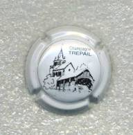 CAPSULE  TREPAIL    Ref 1 !!!! - Unclassified