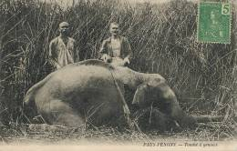 Pays Penons Tombé A Genoux Massacre Elephant Chasse Coll. Barbat - Cambodge