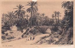 TUNISIE - Gabès. - Aqueduc Dans L´Oasis. Animée; ND 28. - Tunisia