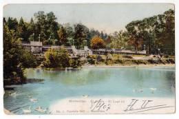 AMERICA URUGUAY MONTEVIDEO GRASSLAND AND THE LAKE Nr. 1 OLD POSTCARD 1907. - Uruguay