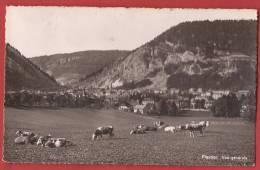 C0507 Fleurier Vue Générale, Troupeau De Vaches. Circulé. Vouga - NE Neuchatel