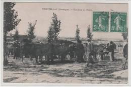 24- Dordogne- Verteillac, Un Jour De Foire - Otros Municipios