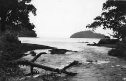 Cameroun :Victoria Limbe Delta - Cameroun