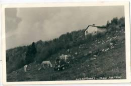 """Les Sciernes D´Albeuve.  Chalet """"Sur L'Alpe"""" - FR Fribourg"""