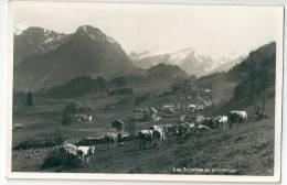 Les Sciernes D´Albeuve. Pâturage, Troupeau Avec Berger - FR Fribourg