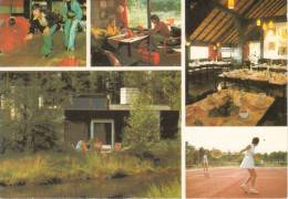 Nederland/Holland, America, Het Meerdal, 5-luik, Ca. 1990 - Horst