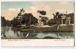 AMERICA ARGENTINA BUENOS AIRES ZOOLOGICAL GARDENS OLD POSTCARD - Argentina