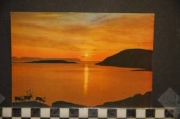 NORVEGE  NORWAY  MIDNATTSOL VED HAMMERFEST  MIDNIGHT SUN AT HAMMERFEST - Noruega