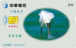 = TAIWAN - IC 02C020  =  MY COLLECTION - Taiwan (Formosa)