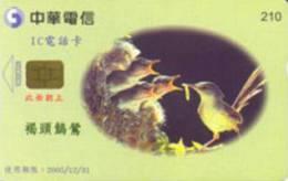 = TAIWAN - IC 02C028  =  MY COLLECTION - Taiwan (Formosa)