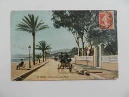 Cp   Cannes -  Le  Boulevard  Jean Hibert   . - Cannes