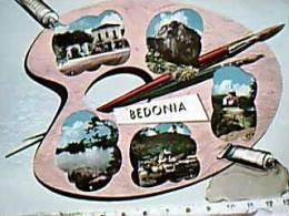 BEDONIA PARMA  VEDUTE E TAVOLOZZA COLORI  V1956  EB9825 - Parma