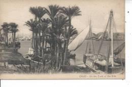 EGYPTE - LE CAIRE - Au Cours Du Nil - Egypt