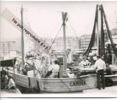 -  MARSEILLE - Photo, Vieux Port, Quai Des Belges, Poissonnière, Vente Directe Du Bateau Carina,TBE. - Reproductions