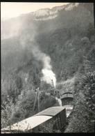 Train  --- Train Mixte Pour Yverdon Entre Trois - Villes Et Six - Fontaines - Trains