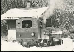 "Train  --- G 4/4 4, ""Alienor "", Et Chasse - Neige A Six - Fontaines --- Vers 1930 - Trains"