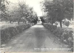 ST.-MARTENS-BODEGEM-WITTE ZUSTERS-KLOOSTER-MOLENSTRAAT-ZIE 2 SCANS - Dilbeek