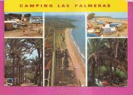 PALMA DE MALLORCA   -    5 PUNTOS DE VISTA * CAMPING LAS PALMERAS  *    -   Ediciones : LA GOLONDRINA  N°596 - Mallorca