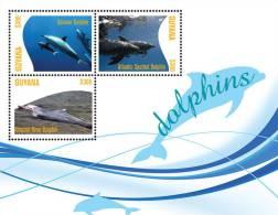 Guyana-Fauna-fish-DOLPHIN S SHEETLET 2 - Fische