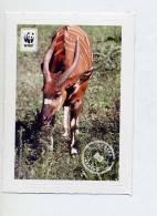 Image à Coller Wwf Edeka Animaux N° 89 Antilope - Vignettes Autocollantes