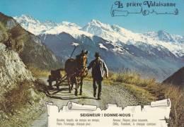 Cp , SUISSE , La Prière Valaisanne - VS Valais