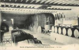 Déc12 594 : Ondes  -  Ecole D'Agriculture  -  Cave - France
