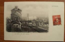France - Sceaux - La Gare Et Les Voies - 1907 - Sceaux