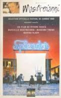 Splendor  °°° Mastroianni Film Ettore Scola - Autres