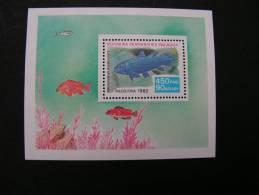 == Malagasy , 1982 Fisch Block  ** MNH - Madagaskar (1960-...)