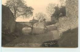 ECAUSSINES  -  Vieux Chateau D´Ecaussines-Lalaing.entrée Actuelle Pratiquée Dans Le Chemin Encaissé De Payelles. - Ecaussinnes
