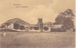 WATERLOO - FERME PAPELOTTE - Waterloo