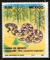 MEXIQUE Reptile  (Yvert 1024) DENTELE Neuf Sans Charniere. ** MNH - Serpents