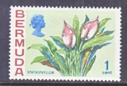 Bermuda 255  **  1970 Issue  FLOWERS - Bermuda
