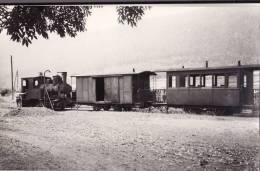 PHOTO. 9X14. TRAMWAY DE  LA VALLEE DE CELLES.  RAON EN PLAINE  PRISE D´EAU.   VOIR LES 2 SCANS. - Treni