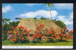 RB 910 - Fiji Postcard - Poinsettia & Bure - Sigatoka - Fiji