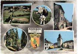 Nozeroy, Multivues (vache, Clocher, ...) - Autres Communes