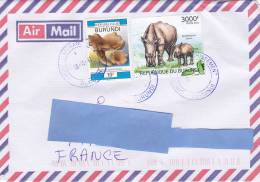 [Z2] Lettre Burundi Rhinocéros Rhino - Rhinoceros