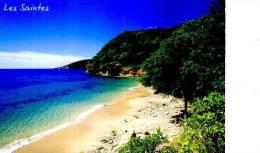 GUADELOUPE LES SAINTES TIMBRE  PLAGE CRAWEN TIMBRE RACOON - Guadeloupe