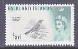 Falkland Islands  128  **  FAUNA  BIRD - Falkland Islands