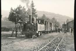 Train --- Arrivee A Lacaune - Les - Bains --- 1953 - Trains