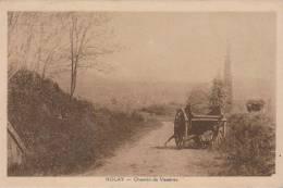 NOLAY-Chemin De Vénères - Francia